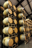 Tambores de vinho empilhados no lado da adega Imagens de Stock