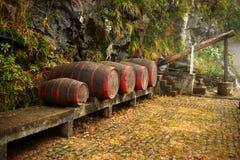Tambores de vinho. Madeira Fotografia de Stock