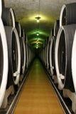 Tambores do fermentaion do vinho foto de stock royalty free