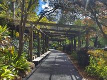 Tamborine góry ogródy botaniczni Obrazy Stock