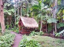 Tamborine góry ogródy botaniczni Zdjęcie Royalty Free