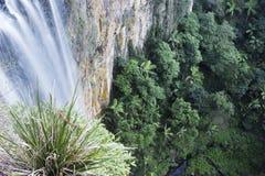 Tamborine Waterfall in Tamborine National Park Stock Photos