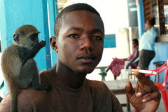Tame monkey, sits on shoulder of young, black man African. Royalty Free Stock Image
