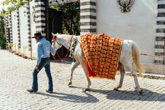 Tamer walk the horse with yellow and red pattern fabric on it, Preparing for Indian wedding ceremony in Bangkok, Thailand Stock Images