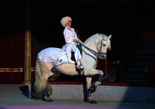 Tamer on a White Horse Royalty Free Stock Photo