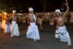 Tamerine spelare eller Pantherukaruwo utför på Esalaen Perahera i Kandy, Sri Lanka Arkivbild