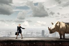 Taming an animal. Young pretty businesswoman holding rhino on lead Stock Photo