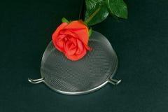 Tamis de cuisine avec les roses rouges sur un fond noir Images libres de droits