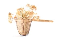Tamis de th? avec les fleurs s?ches de tilleul photo libre de droits