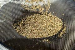 Tamisage de l'appât au travers d'un tamis pour préparer une masse homogène pour attirer des poissons photo libre de droits