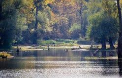 Tamisflod Royaltyfri Fotografi