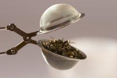 Tamiz del té Foto de archivo libre de regalías