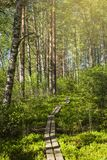 Tammela, Finland stock image