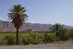 Tamnougalt Kasba όπου εδώ ο σκηνοθέτης Bernardo Bertolucci το τσάι ταινιών του IL στην έρημο στοκ φωτογραφία με δικαίωμα ελεύθερης χρήσης