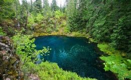 Tamolitch水池,俄勒冈,美国 库存照片