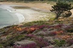 Tampão Frehel (Brittany, França): a praia Imagens de Stock