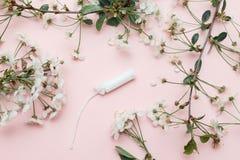 Tampão higiênico e guardanapo sanitário para cada dia com a cuecas cor-de-rosa e branca com flores verdes em um fundo branco imagem de stock