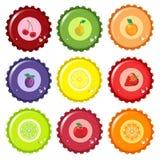 Tampões de frasco do suco de fruta Fotos de Stock Royalty Free