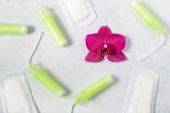Tampões do algodão, almofadas menstruais com a orquídea em claro - fundo cinzento Conceito da sa?de cr?tica dos dias, da menstrua fotografia de stock royalty free