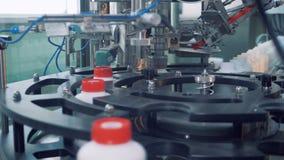 Tampões vermelhos colocados em garrafas, equipamento automatizado vídeos de arquivo