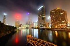 Tampa lizenzfreies stockbild