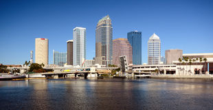 Tampa Stock Images