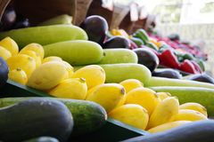 Tampa Bay Farmers Market Fruit and Vegetable stock image