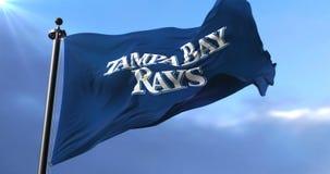 Tampa Bay Rays flag, american professional baseball team, waving at wind - loop. Flag of the team of the Tampa Bay Rays, american professional baseball team stock video footage