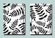 Tampa com folhas da samambaia Cores preto e branco Dois moldes florais do vetor dos insetos Formato A4 ilustração royalty free