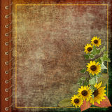 Tampa do álbum com flores Fotos de Stock Royalty Free