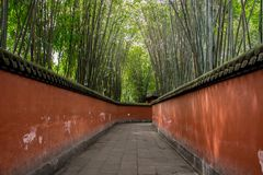 A tampa do trajeto por bambus foto de stock