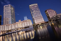 Tampa downtown Stock Image