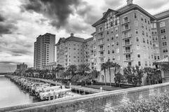 TAMPA - FEBBRAIO 2016: Costruzioni della città davanti alla piccola b messa in bacino Immagine Stock Libera da Diritti