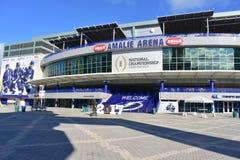 Tampa, FloriAmalie arena Fotografia Royalty Free