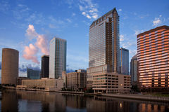 Tampa Florida. The buildings of downtown Tampa Florida near sunset stock photography