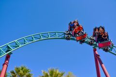 Nice people and kids enjoyins amazing Cobra`s Curse rollercoaster at Bush Gardens Tampa Bay Theme Park stock photos