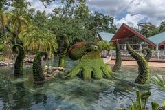 TAMPA FLORIDA - MAJ 05, 2015: Blommaprydnad i Busch trädgårdar Tampa Bay Florida Fotografering för Bildbyråer