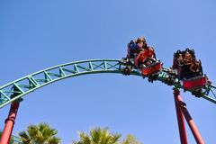 Nice people and kids enjoyins amazing Cobra`s Curse rollercoaster at Bush Gardens Tampa Bay Them stock images