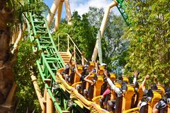 Funny people in Cheetah Hunt Rollercoaster, crossing the forest, way to the top at Bush Garden. Tampa, Florida; September 29, 2018. Funny people in Cheetah Hunt royalty free stock photography