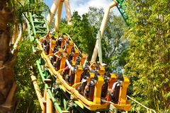 Funny people in Cheetah Hunt Rollercoaster, way to the top at Bush Gardens Tampa. Tampa, Florida; September 29, 2018 Funny people in Cheetah Hunt Rollercoaster royalty free stock images