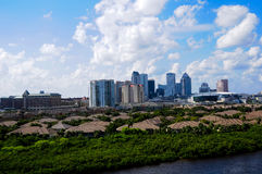 Tampa Florida Skyline stock photos