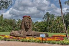 TAMPA FLORYDA, MAJ, - 05, 2015: Kwiatu ornament w Busch ogródach Zatoka Tampa Floryda Zdjęcie Royalty Free