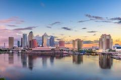 Tampa, Floryda, usa w centrum linia horyzontu na zatoce obraz stock