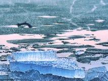 Tampa gelada inferior litoral do inverno Andscape gelado com partes quebradas de gelo azul Fotos de Stock Royalty Free