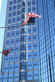 Tampa Highrise with Flags Stock Photos