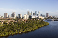 Tampa. Morning view of Tampa city skyline (Florida Royalty Free Stock Images