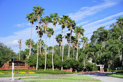 Tampa palms community Royalty Free Stock Photo