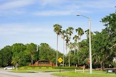 Tampa palmy wejście zdjęcia royalty free