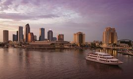 Tampa Skyline Royalty Free Stock Image
