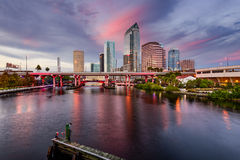 Tampa Skyline. Tampa, Florida, USA downtown city skyline over the Hillsborough River Stock Image